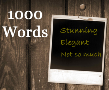 What 1000 words do you want your picture to convey?